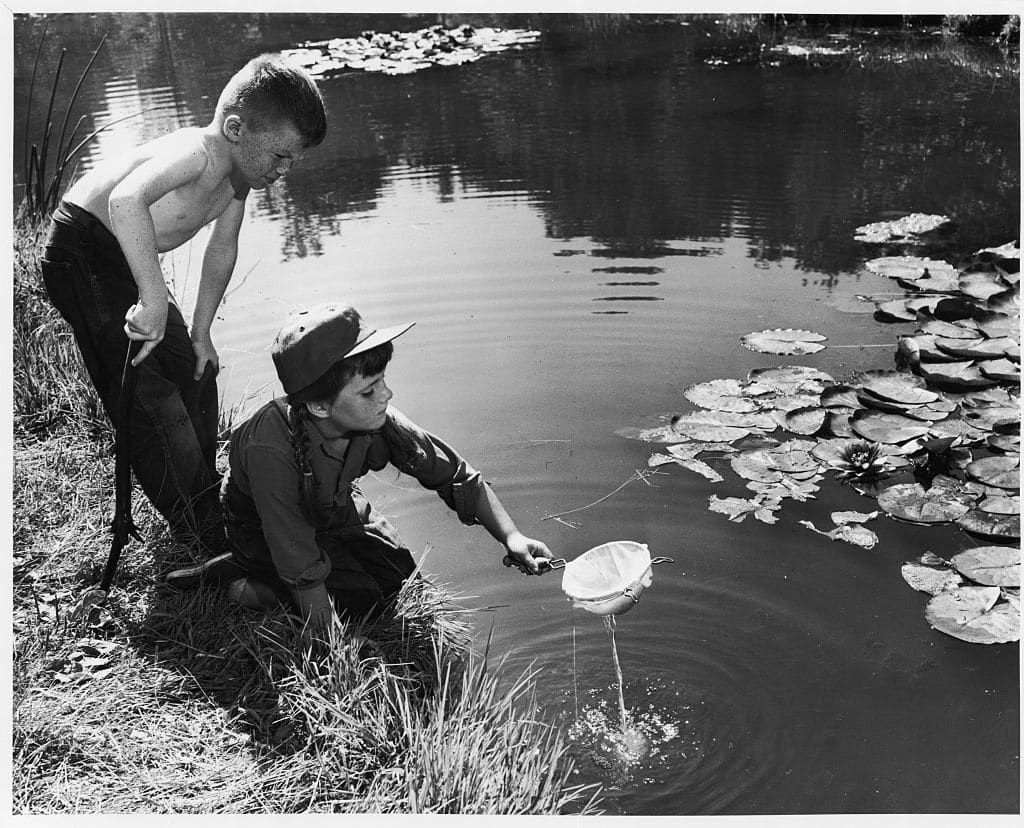 vintage boys playing in frog pond kids in nature