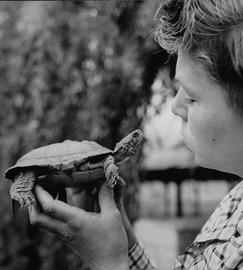 vintage boy holding turtle kids in nature