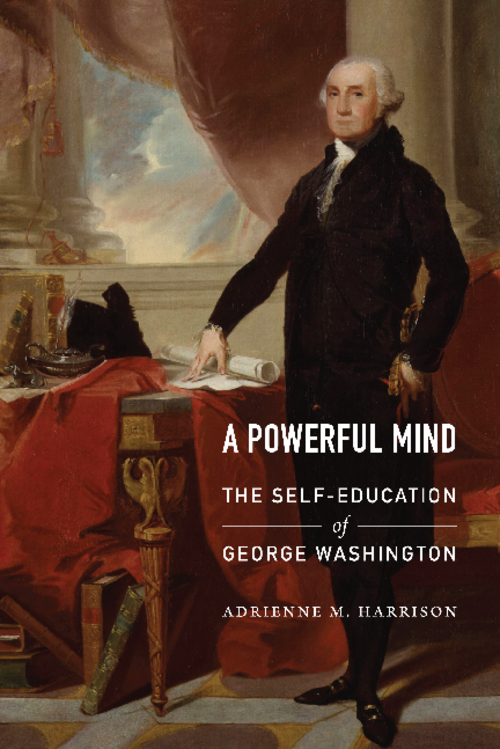 Book cover of A powerful mind by Adrienne Harrison.