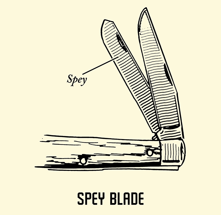 spey pocket knife blade illustration
