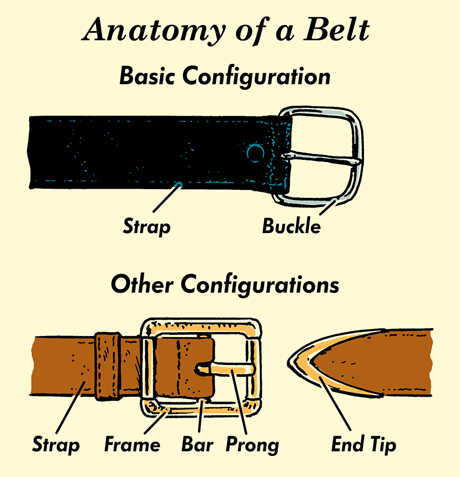 belt parts anatomy illustration