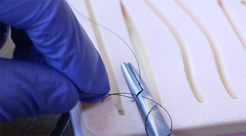 Hold the thread on the left side of the needle and wrap twice around the tip of the needle holder.