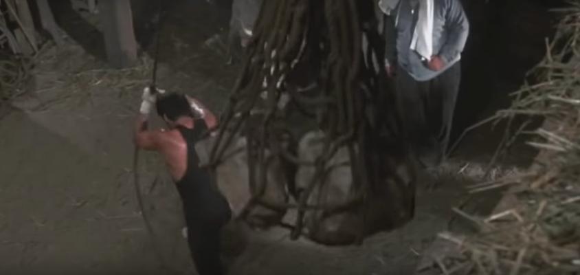 Rocky while hoisting rocks.