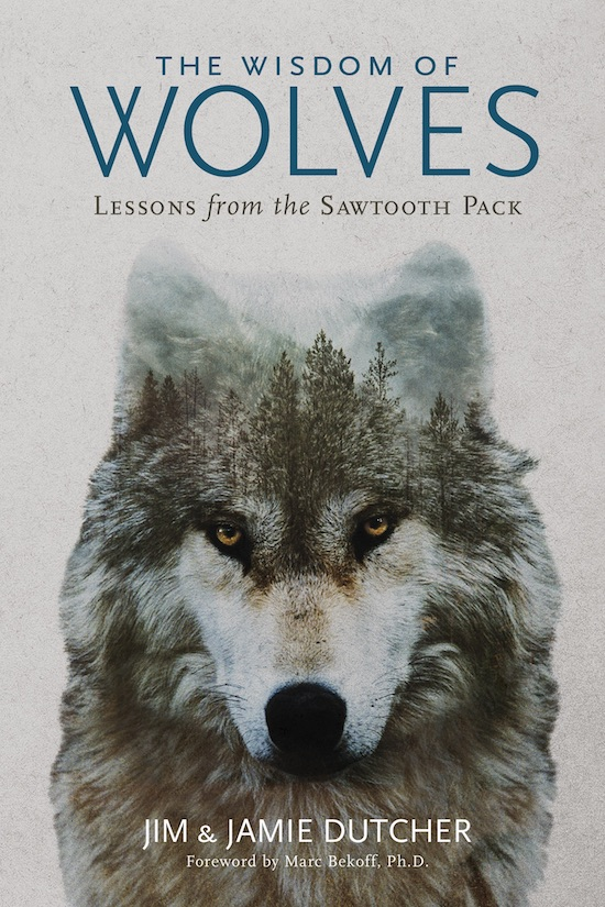 The Wisdom of Wolves by Jim & Jamie Dutcher book cover.