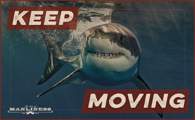 Poster by Art of Manliness about a shark indicating to keep moving.