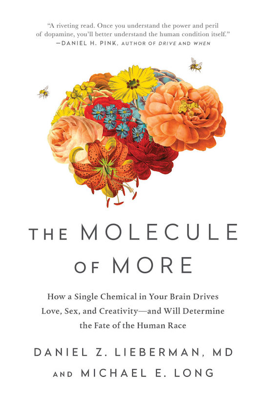 Book cover of The Molecule or More by Daniel Z. Lieberman. MD.