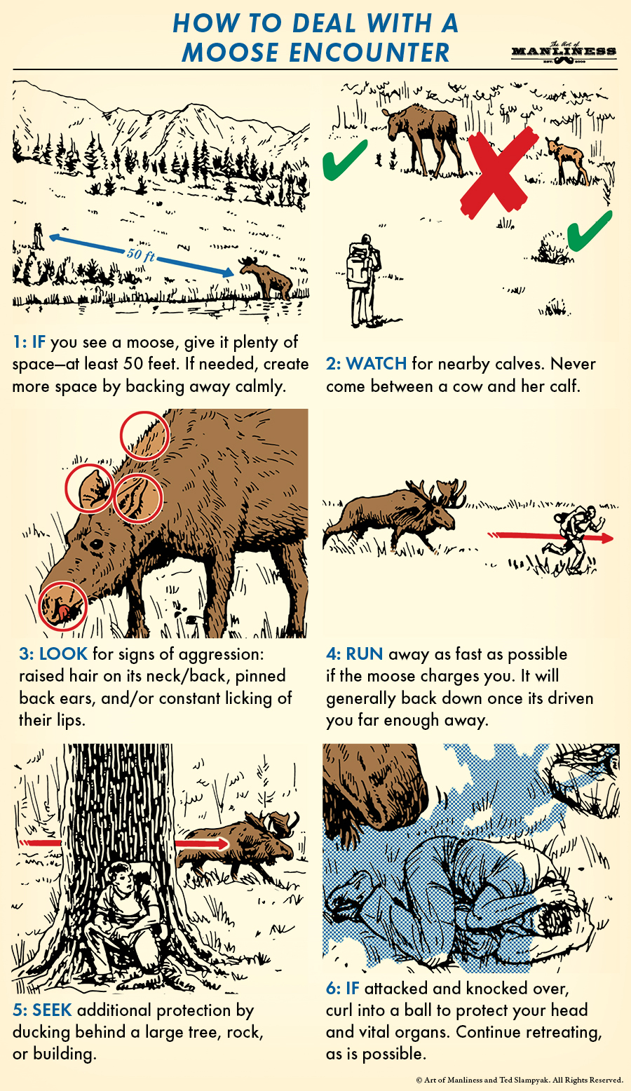 Poster by Art of Manliness regarding an encouter with a moose.