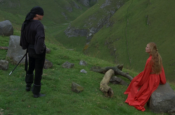 "Scene from the movie ""The Princess bride"" in which hero is looking at heroin on hill."