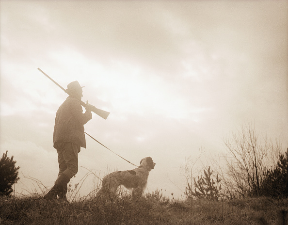 Man hunting with his dog and gun in a forest.