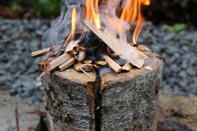 Fire flame on a log.