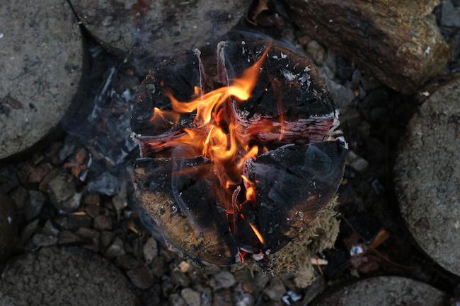 Burning of a log.