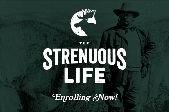 Poster of The Strenuous Life.