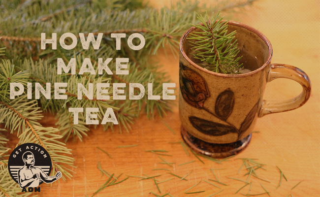 Pine needles in a cup.