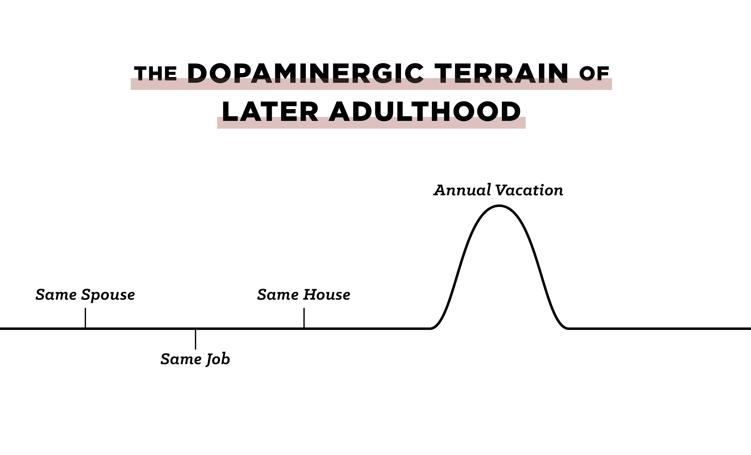 "Graph of ""The Dopaminegic Terrain Of Later Adulthood""."
