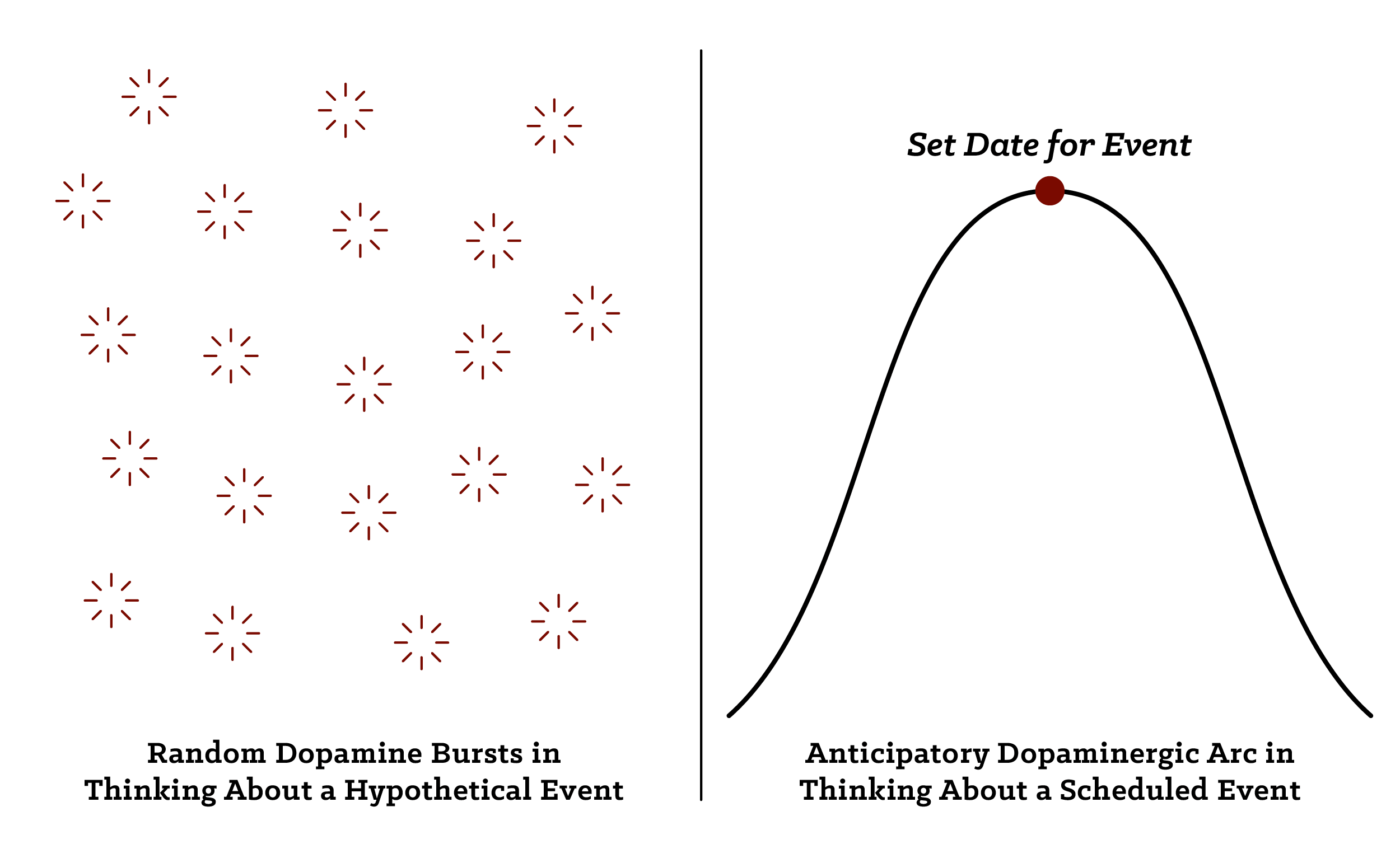 Graphical Comparison between Random dopamine bursts in thinking about a hypothetical event and Anticipatory dopaminegic arc in scheduled event.