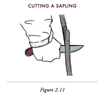 Cutting of sapling with knife.