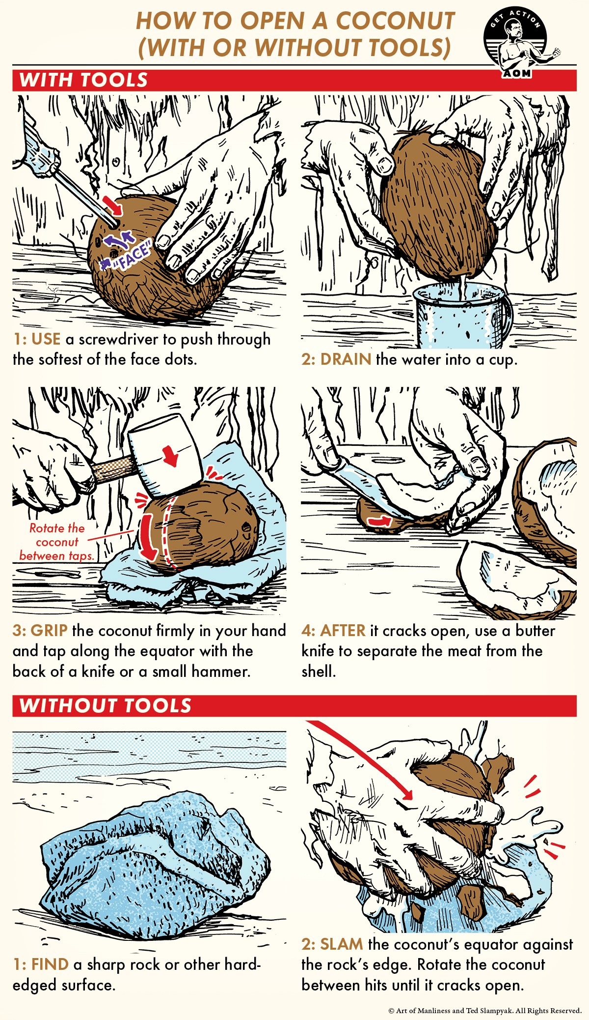 A comic guide How to open a coconut with hammer and screw driver.