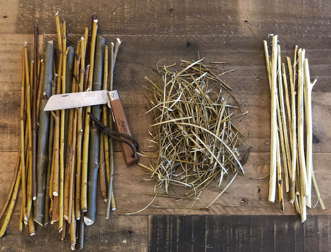 Fresh and dried willow barks with pocket knife.