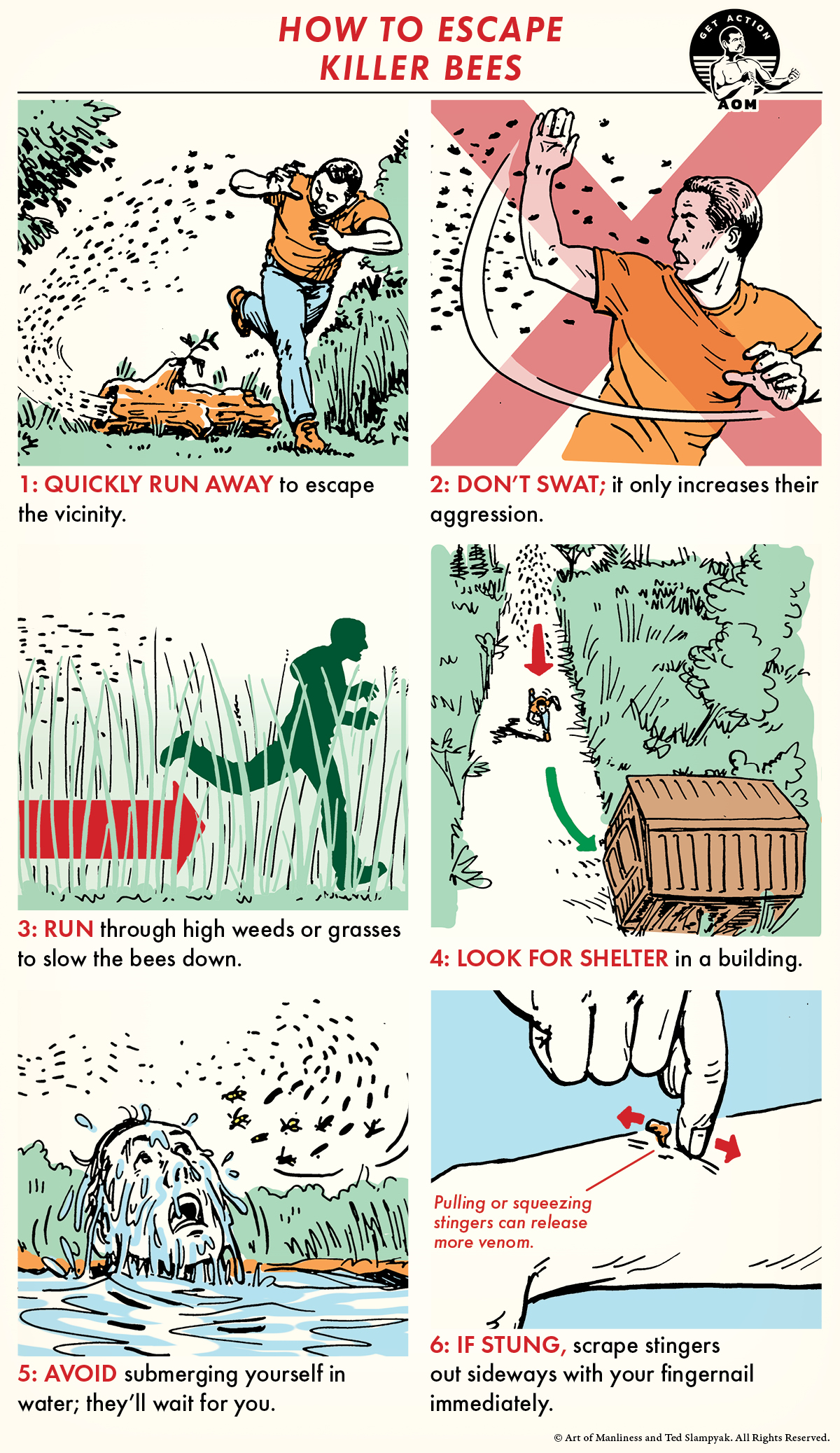 Comic show how to escape from killer bees.
