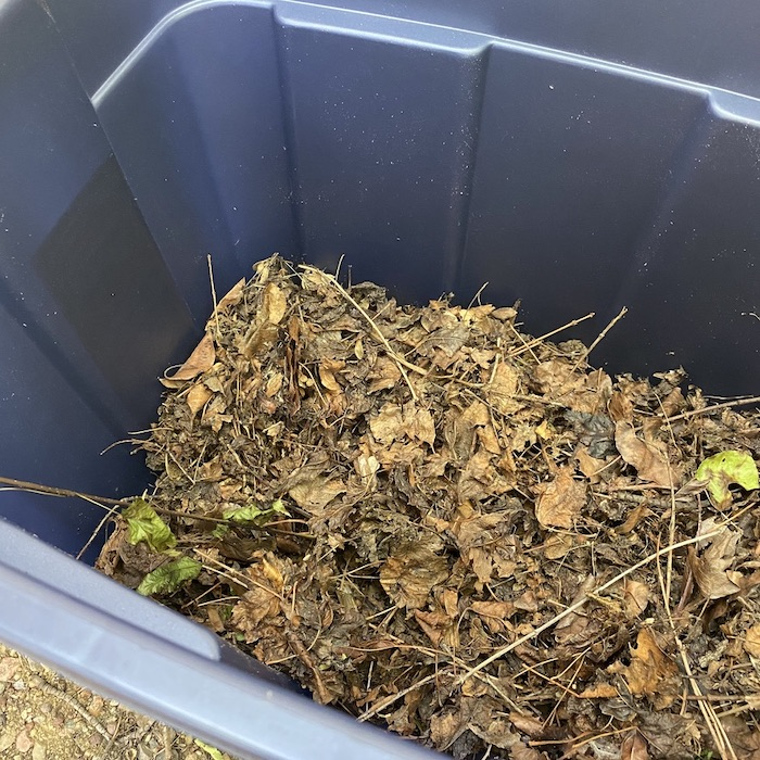 Waste materials such as leaves has been thrown in plastic bin.