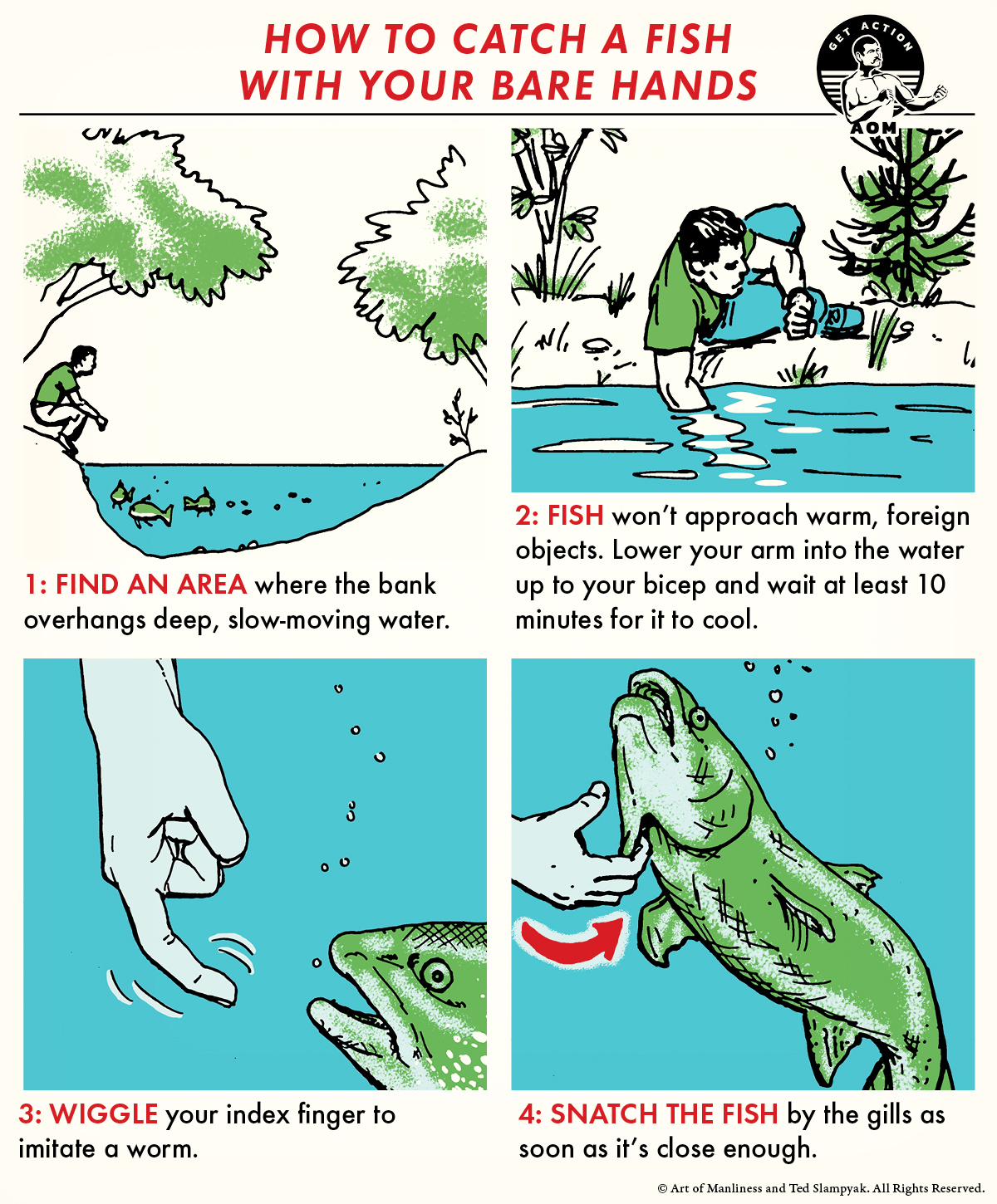illustrated step-by-step guide how to catch a fish with bare hands.