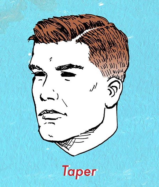 illustration of taper haircut for men.