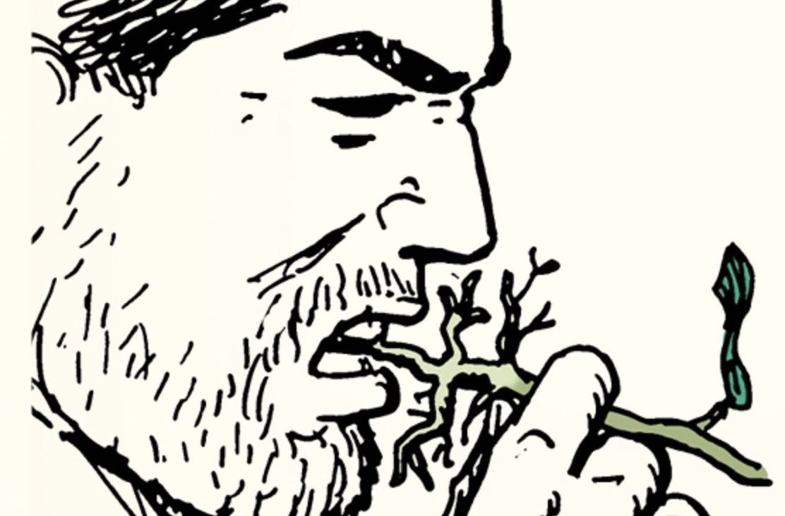 How to Test if a Plant Is Edible | The Art of Manliness